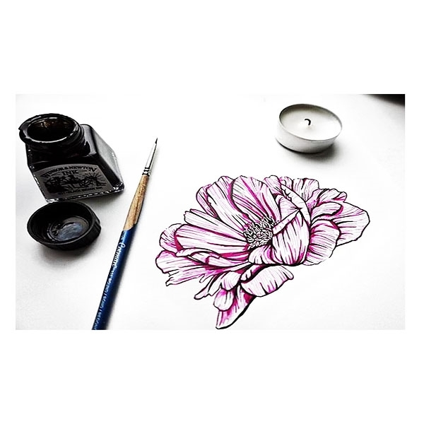 Picture for category Drawing Inks