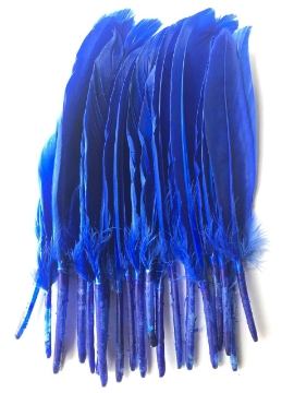 Picture of HTC Craft Feather Artificial Small Blue